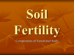 Soil Fertility notes