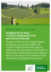 Ecological Focus Areas – Crucial for biodiversity in the agricultural