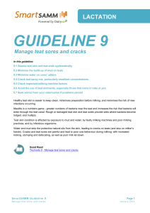 guideline 9