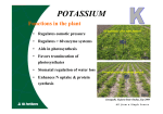 potassium - ICL Fertilizers