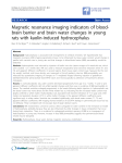 Magnetic resonance imaging indicators of blood