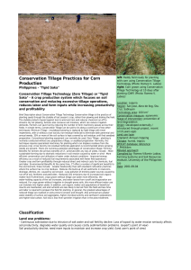 Conservation Tillage Practices for Corn Production