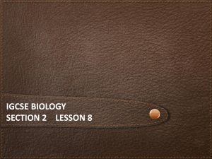iGCSE Biology Section 2 lesson 8