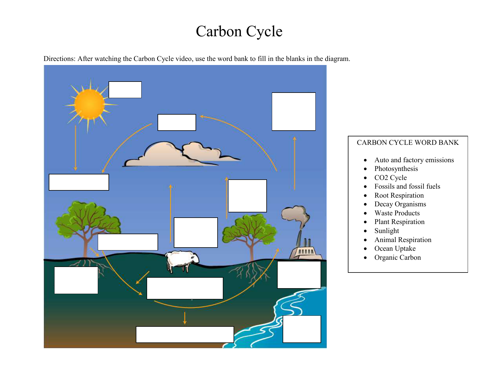 after watching the carbon cycle video, use the word bank to fill in