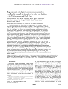 Biogeochemical and physical controls on concentrations of