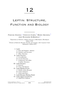 Leptin: Structure, Function and Biology