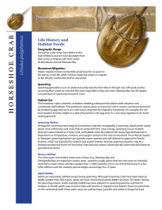 Horseshoe Crab Habitat Factsheet - Atlantic States Marine Fisheries