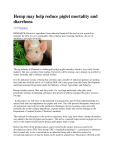 Hemp may help reduce piglet mortality and diarrhoea
