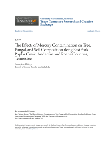The Effects of Mercury Contamination on Tree, Fungal, and Soil