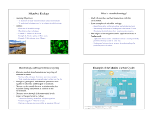 1 Microbial Ecology Example of the Marine Carbon Cycle: