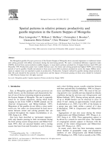 Spatial patterns in relative primary productivity and