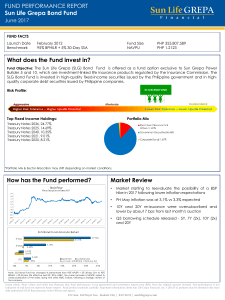 What does the Fund invest in? FUND PERFORMANCE REPORT