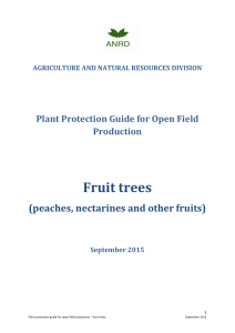 Fruit trees - St Helena « Government