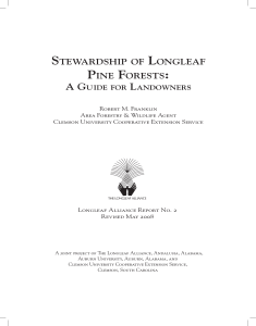 stewardship of longleaf pine forests
