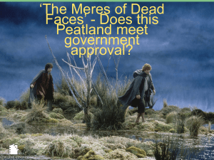 `The Meres of Dead Faces` - Does this Peatland meet