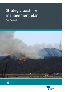 Strategic bushfire management plan