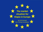 The EU market for tilapia Trends, issues and outlook