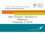 2011 Cohort - Session 6 Webinar February 3, 2014