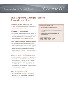 Blue Chip Fund Changes Name to Focus Growth Fund