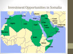 Investment Opportunities in Somalia