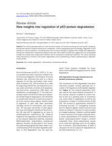 New insights into regulation of p53 protein degradation