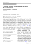 Change in the morphology of ZnO nanoparticles upon changing the