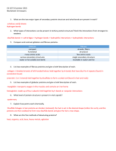 CH 107 SI Summer 2015 Worksheet 13 Answers What are the two