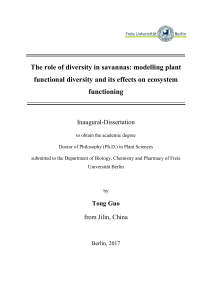 The role of diversity in savannas: modelling plant functional diversity
