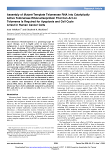 Assembly of Mutant-Template Telomerase RNA into Catalytically
