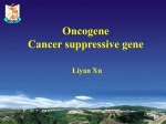 2-14 oncogene and suppressive gene of cancer-xu liyan