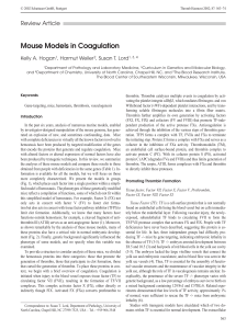Mouse Models in Coagulation
