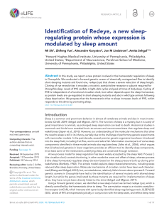 Identification of Redeye, a new sleep-regulating protein whose