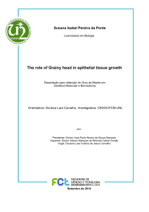 The role of Grainy head in epithelial tissue growth