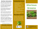 Glorious Greens ½ - The University of Arizona Extension