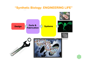 Synthetic Biology: ENGINEERING LIFE
