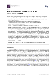 Post-Translational Modifications of the TAK1-TAB Complex