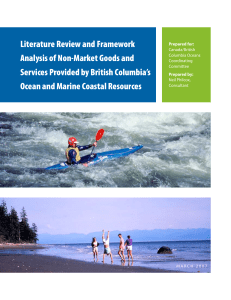 Literature Review and Framework Analysis of Non