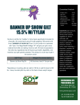 Banner Up Show gilt 15.5% w/tylan We like to call this the