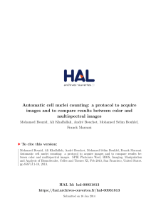 Automatic cell nuclei counting