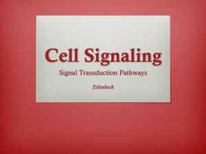 Cell Signaling - Erlenbeck`s Science Room