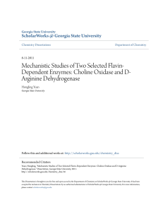 Mechanistic Studies of Two Selected Flavin