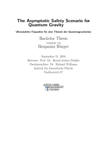 The Asymptotic Safety Scenario for Quantum Gravity Bachelor