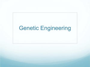 Genetic Engineering - Roslyn Public Schools