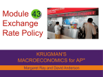 Exchange Rate Policy Macro_Module_43