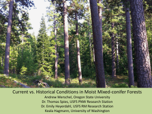 Current vs. Historical Conditions in Moist Mixed