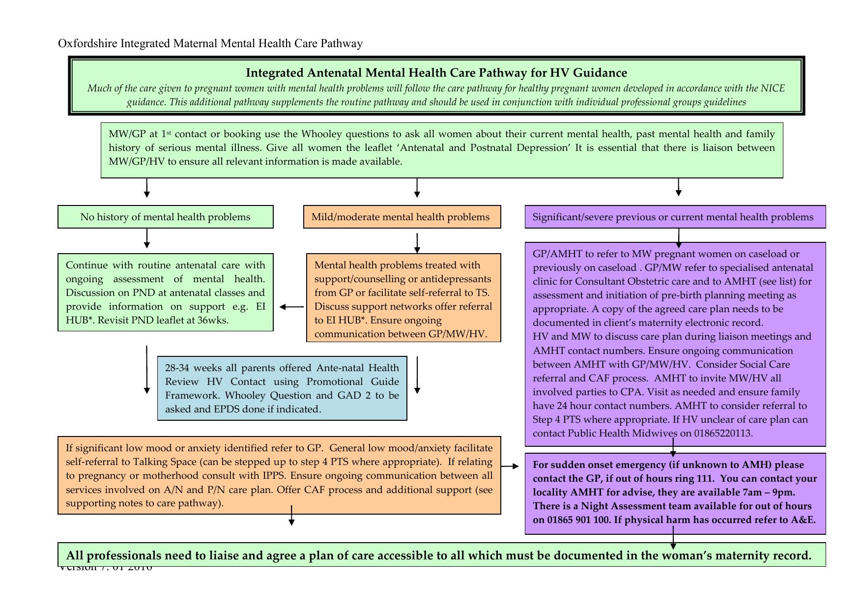 Teenage Pregnancy Care Pathway