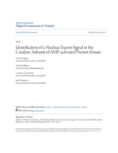 Identification of a Nuclear Export Signal in the Catalytic Subunit of