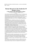 Human Bacteria In The Production Of Human Cancer