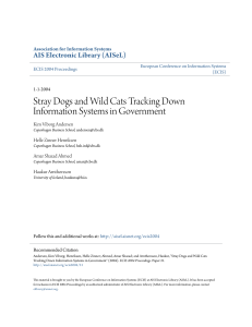Stray Dogs and Wild Cats Tracking Down Information Systems in