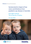 Socioeconomic impact of low vision and blindness from